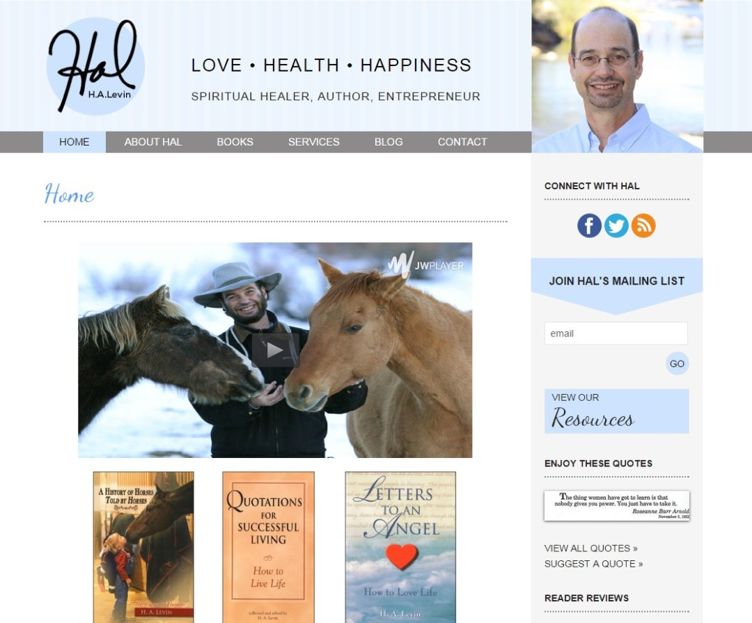 Custom Designed Wordpress Website for Hal Levin