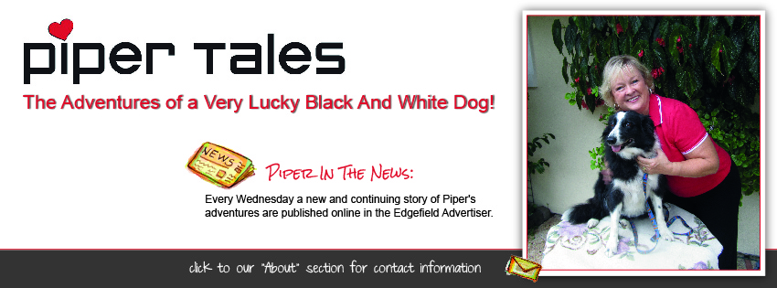Facebook Cover Design for Piper Tales